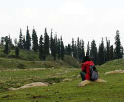 Travel To Gulmarg