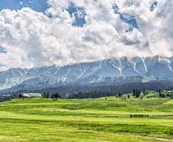 Honeymoon Tour To Gulmarg