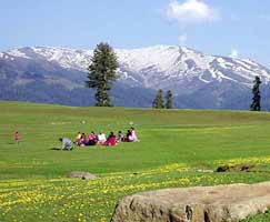 Tour Package In Gulmarg
